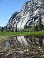 Meadow Reflections (16436165788).jpg