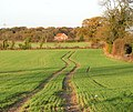 Meandering tractor track in field west of lane to Swardeston - geograph.org.uk - 1584697.jpg