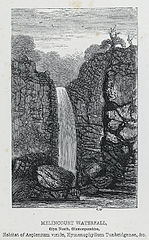 Melincourt waterfall, Glyn Neath, Glamorganshire