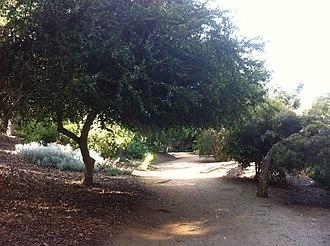 Mildred E. Mathias Botanical Garden - Image: Mildred E. Matthias Botanical Gardens 03
