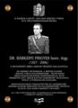 Military history Hungary.png