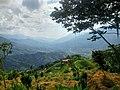 Mirador en la vía a Santo Domingo (Antioquia).jpg