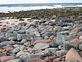 Mixed rocks at the Bay of Stoer - geograph.org.uk - 61676.jpg