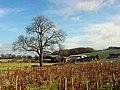Moat House Farm - geograph.org.uk - 123747.jpg