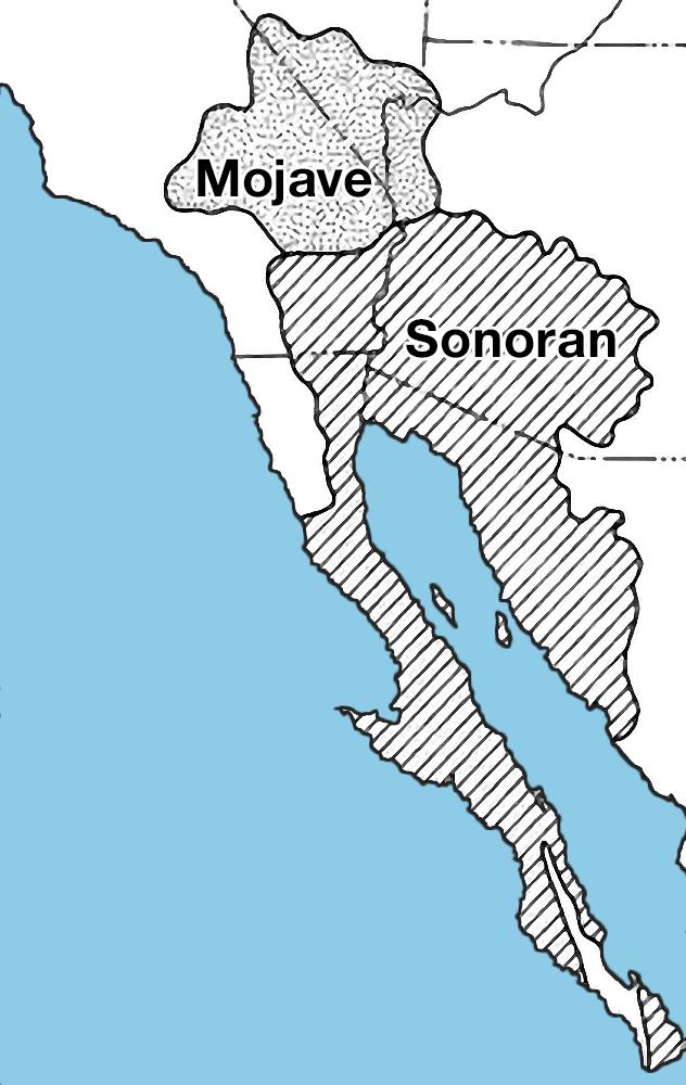 Mojave-sonoran deserts