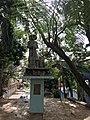 Monumento el Mensú.jpg