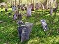 Moses Cemetery Petersburgh NY.jpg