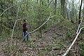 Motte op de Butsberg te Tielt-Winge - 371476 - onroerenderfgoed.jpg