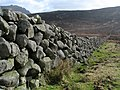 Mourne Wall, Slievenaglogh - geograph.org.uk - 1206346.jpg