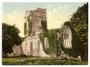 Muckross Abbey - The abbey in the 1890s