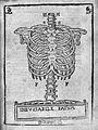 Mundinus, Anatomia Mundini... Wellcome L0027535.jpg