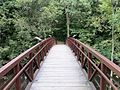 Mystery Cave Bridge - panoramio.jpg