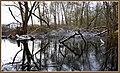 Mystery Ponds (16226532309).jpg