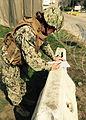 NMCB 3 Seabees conduct CPX 150220-N-RH517-002.jpg
