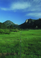 NRCSCO01012 - Colorado (1415)(NRCS Photo Gallery).tif