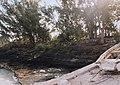 Nassau - Compound Site - 1987 - DPLA - da24830b98d1a1451f4328957c6245cb.jpg