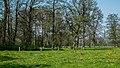 Nationaal Landschap Drentsche Aa (3).jpg