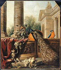 Still Life with a Peacock