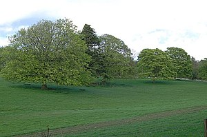 Balcarres House - Image: Near Balcarres geograph.org.uk 426216