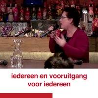 File:Nelleke over de mooie dag in Groningen..webm