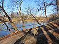 Neubukow Mühlenteich 2012-01-26 058.JPG