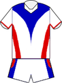 Newcastle Knights 2014 Away Jersey.png