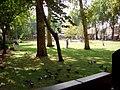 Newington Green, London Borough of Hackney, N1 N16 (1351768009).jpg
