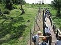 Ngamba Island Chimpanzee Sanctuary - Pallet.jpg