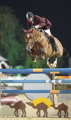 Horse show - Show Jumping
