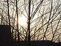 Nizhny Tagil, Sverdlovsk Oblast, Russia - panoramio (26).jpg