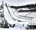 Nordic World Ski Championships 2017-02-26 (33113163672).jpg