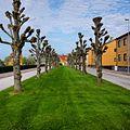 Norra Kungsgatan, Mellerud.jpg