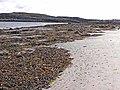 Northern beach of Eilean Dubh - geograph.org.uk - 1453778.jpg