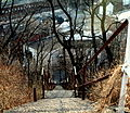 Northside steps (326340927).jpg
