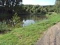 Novozákupský rybník 4.JPG