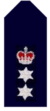 Nsw-police-force-chief-superintendent.png