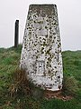 O.S. Trig. Point, Buckton Cliffs - geograph.org.uk - 770236.jpg
