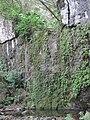 Oahu-Kahaluukalo-Ahuimanuwaterfall-dry.JPG