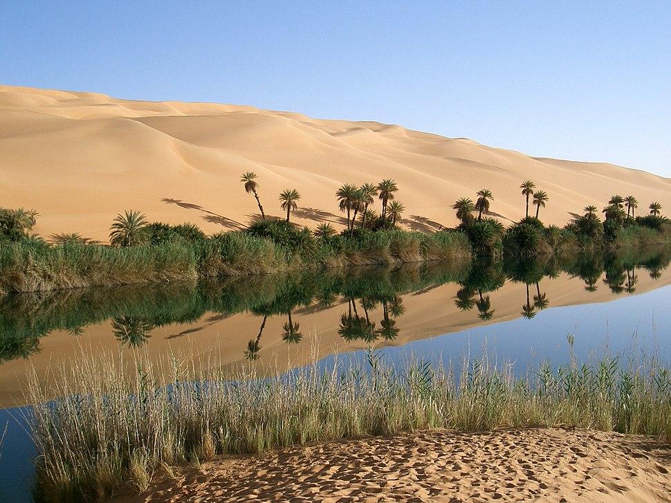 Oasis in Libya
