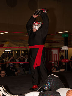 Octagoncito Mexican professional wrestler