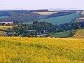 Oilseed crop north of Aldbourne - geograph.org.uk - 1384772.jpg