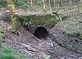 Old Drift Mine Entrance - geograph.org.uk - 401852.jpg