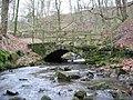 Old Footbridge - geograph.org.uk - 310638.jpg