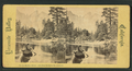 On the Merced River, Cathedral Rocks in the distance, from Robert N. Dennis collection of stereoscopic views.png