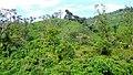 On the way to Akkalamai - panoramio (1).jpg