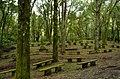 Oratorio - panoramio (5).jpg