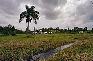Commewijne District District of Suriname