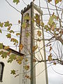 PIC Laj Ribeiras treeSantaBarbara.JPG