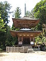 Pagoda of Kontaiji.JPG