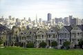 Painted ladies.png